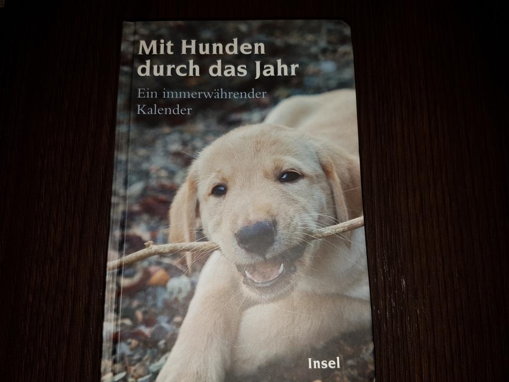 Tipp für Hundeliebhaber zum Jahreswechsel