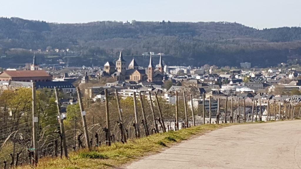 Blick auf Trier 2021