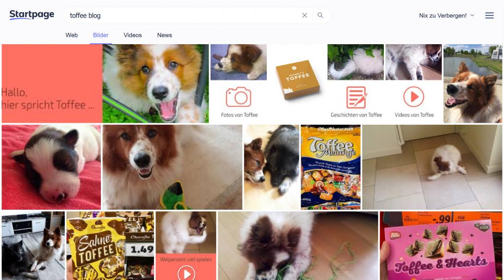 Suchergebnisse Toffeee Blog im Interent