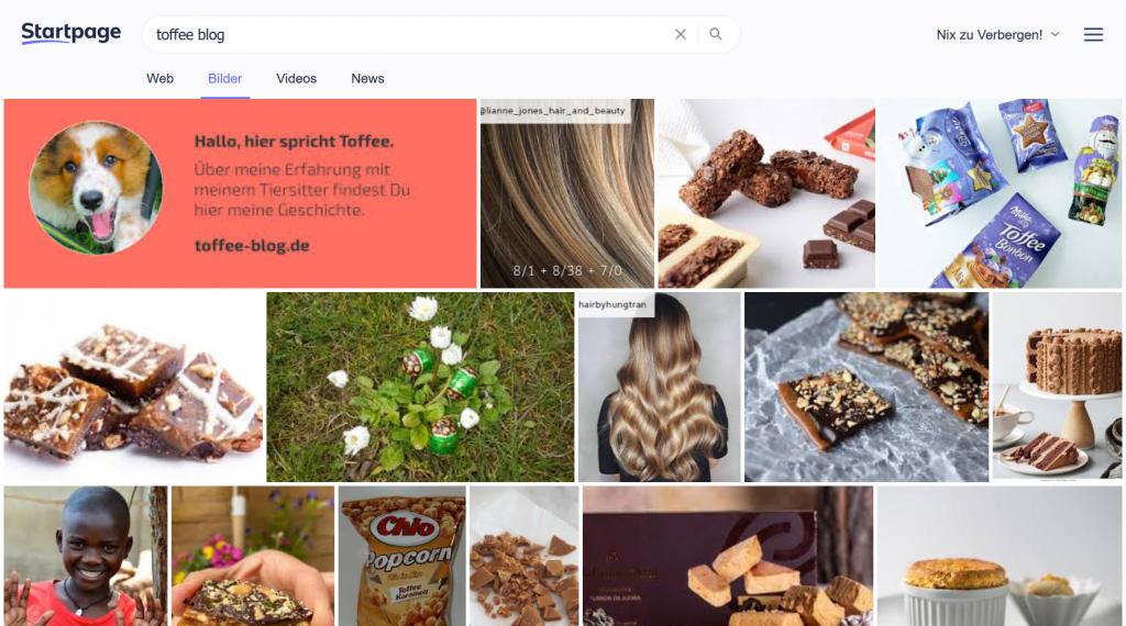 Suchergebnisse Toffee Blog im Internet